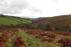 A. Source to Riscombe Combe