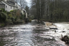 Dulverton Mill Stream