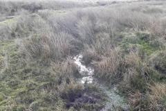 Embercombe Water