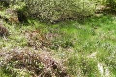 J. Kennisham Hill Source to Upper Pond Cottages