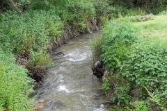 L. Traphole Stream :: D. Pitt Mill to Roadwater