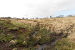 Source to Chetsford Bridge
