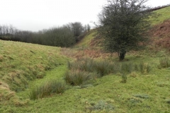 Source to Stolford Hill