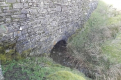 Tributary Streams