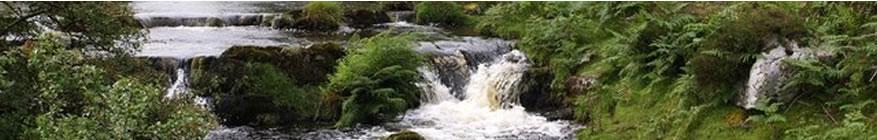 Exmoor Waters